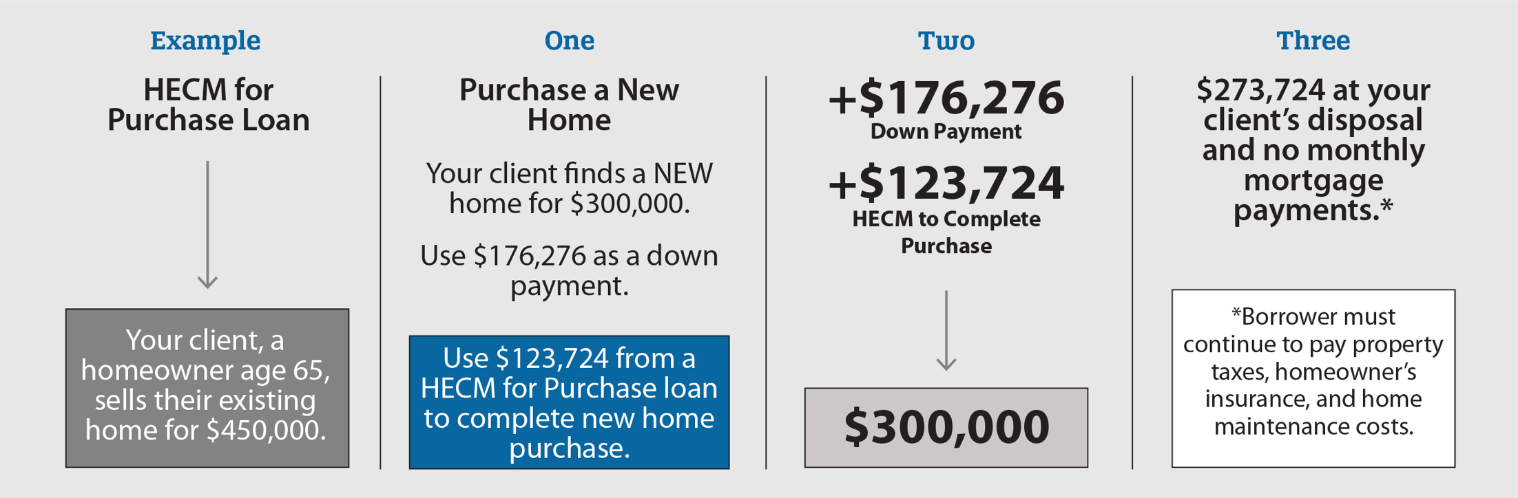 HECM for Purchase Loan Example